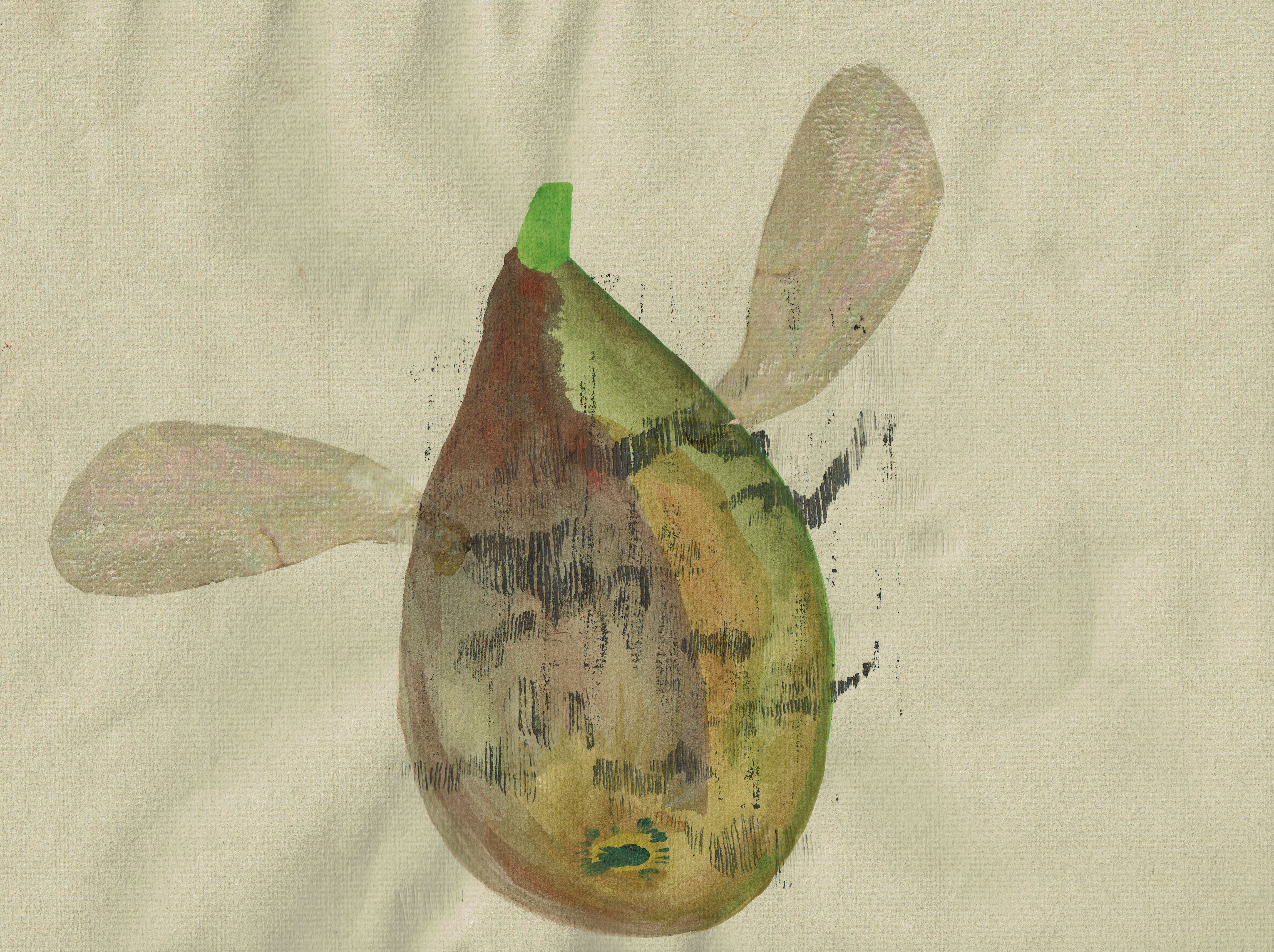 ALICIA ZHENG The Fig Wasp